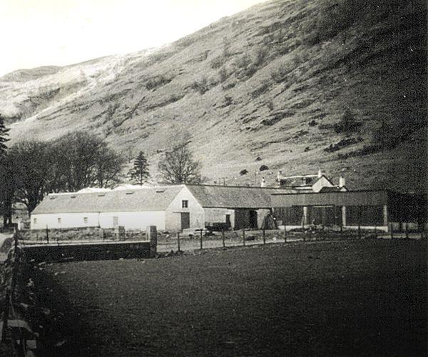 Loch Fyne Oyster Farm, Clachan, Argyll