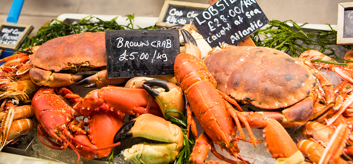Loch Fyne Oysters Deli. Fresh and Smoked Fish, Seafood, Shellfish, Crabs, Lobsters & Langoustines