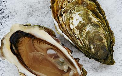 Discover Loch Fyne Oysters Wedding Menus